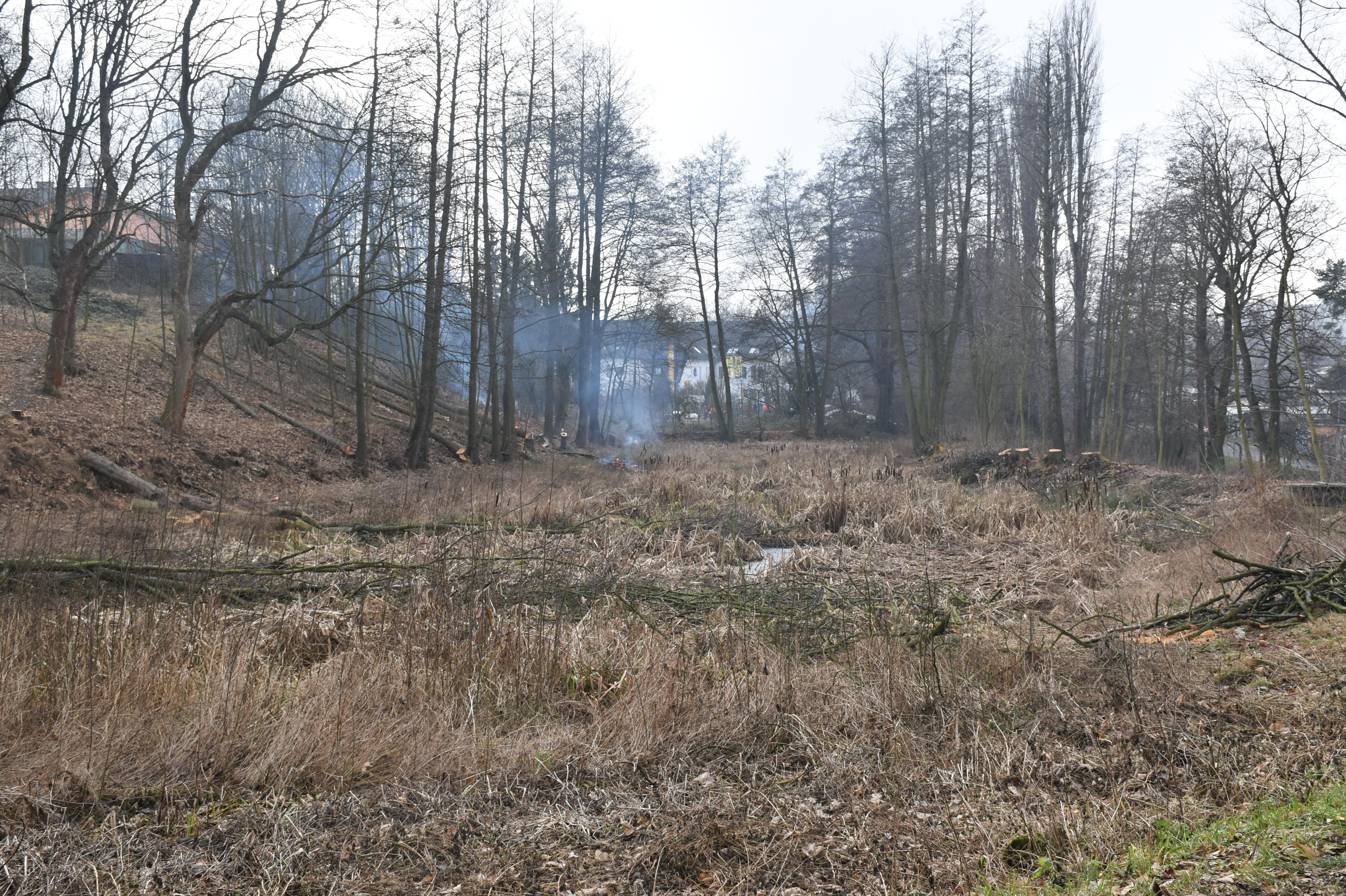 Součástí Zelené páteře Příbrami je i Čekalíkovský rybník